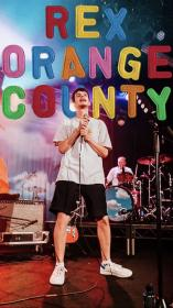 Rex Orange County Wallpaper Picture collage wall, Art
