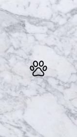 instagram highlights insta icons icon story dog backgrounds iphone highlight background phone ikon wall history snapchat hintergrund frame feed cute