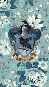potter harry ravenclaw aesthetic draco hogwarts hermione hufflepuff wallpapers desktop background slytherin fan fanart iphone wall houses hp pride pw