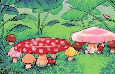 aesthetic indie collage mushroom anime drawing cartoon malen painting plushpon hippie mushrooms wallpapers drawings psychedelic retro grace weheartit silence desert