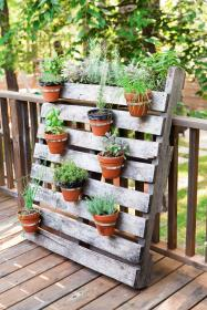 projects garden pallets easy countryliving herb pallet wood plants potted kitchen gardens use porch greenery some