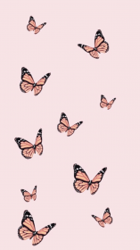aesthetic butterfly iphone rose gold wallpapers backgrounds phone xr