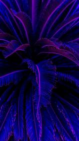 aesthetic wallpapers iphone neon backgrounds hupages gaming android amoled purple
