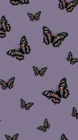 Butterfly Iphone Wallpaper Aesthetic ipcwallpapers in