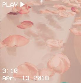 aesthetic pink peachy water petals peach vhs rose bathtub flowers pastel soft roses orange aesthetics heart bubbline grunge wallpapers shared