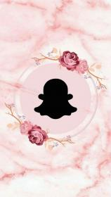 snapchat highlight 1000 cedar aesthetic pink birthday icons iphone nature flower fencing absaned backgrounds story articulo