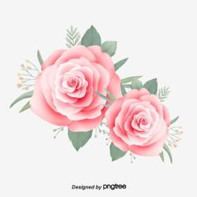 aesthetic rose pink hand clipart psd fresh painted drawn file transparent leaf 2500 pngtree plan