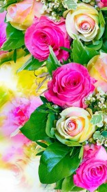 wallpapers rose flower pink mobile flowers iphone desktop pastel 1080p earth background phone bouquet walls abyss tablet google wallpaperplay check