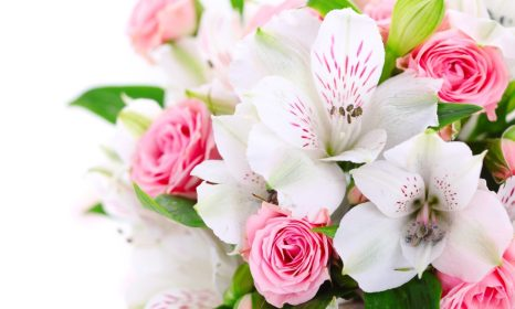 A Bouquet Flowers Pink Roses White Orchids 2560x1600