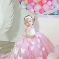 Baby Girl Birthday Party Theme