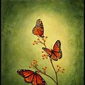 Beginners Easy Butterfly Painting Ideas