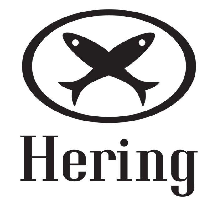 Melhores franquias Hering Store