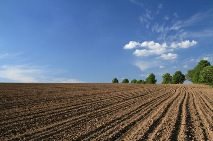 Sistema de Plantio Direto
