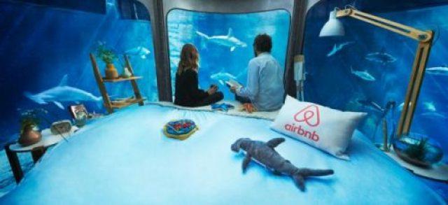 small-ubi-bene-shark-suit-6