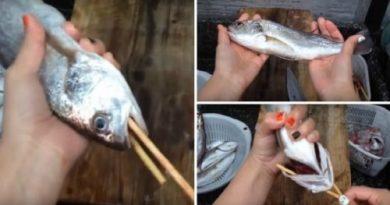 Как быстро почистить рыбу от чешуи и выпотрошить ее