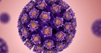 Правда и мифы о вирусе папилломы