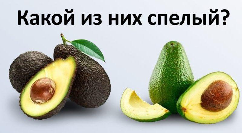 Как выбрать спелые фрукты - шпаргалка для любителей экзотики