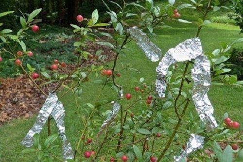 10 гениальных идей использования алюминиевой фольги
