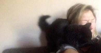 Кошка, которая пытается отучить хозяйку распевать песни
