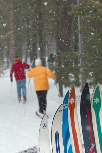 Bring your own skis or rent Cross country skis at the Lodge.