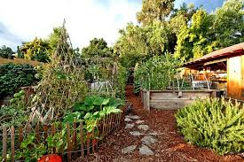 With creative planning, vegetable gardens can be as beautiful as they are useful.