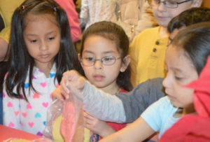Student shoppers eye homemade play dough