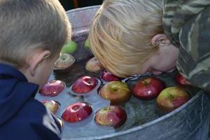 apple_bobbing