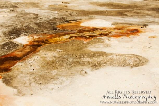 yellowstone-3_067
