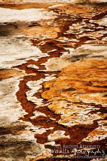 yellowstone-3_082
