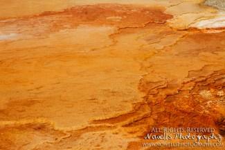 yellowstone-3_092
