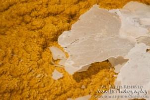 yellowstone-3_107