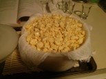 Cheddar cheese curds before pressing.