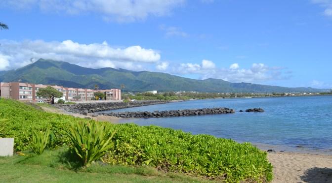 Anna's Hawaiian Vacation: Conclusion