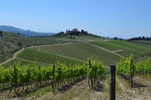 Approaching the Castello di Radda winery
