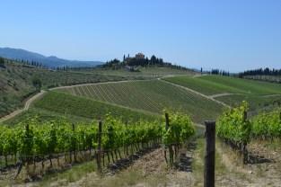 Approaching the Castello di Radda winery