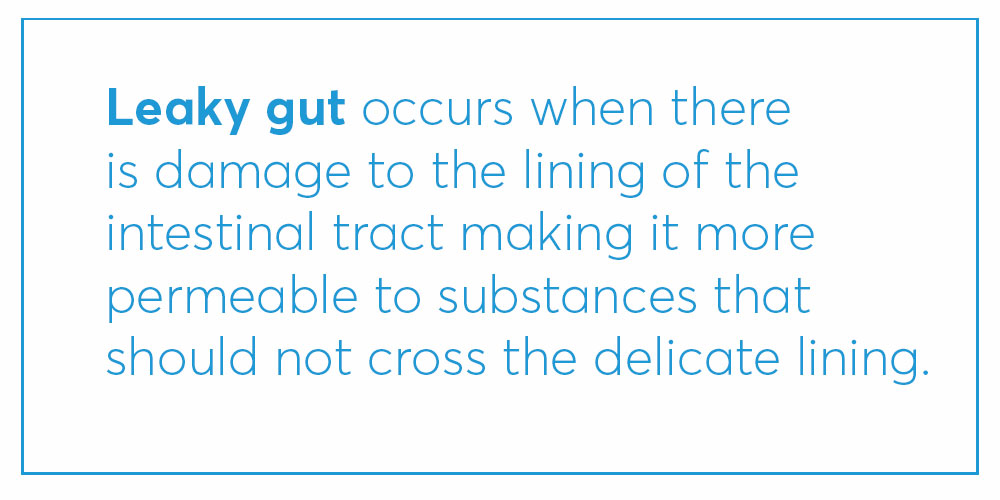 definition of leaky gut (explained)