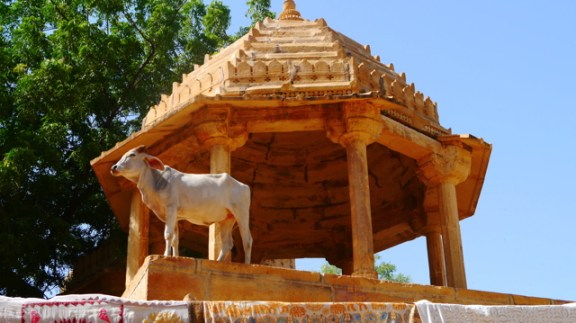 Inde 22 septembre - Jaisalmer 003