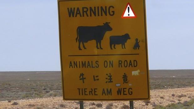 La vache, ok. Le mouton, Ok. Mais la petite fille?
