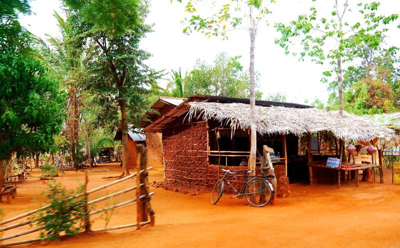 Voyage au Sri Lanka (22 sur 13)