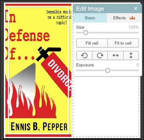 PicMonkey collage Edit Image window.