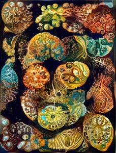 deep dream version of Ernst Haeckel image
