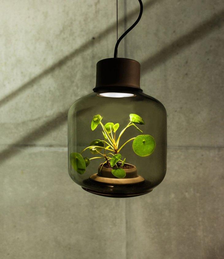 zielona lampa 2