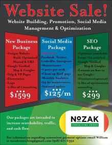 Website Sale - Nozak Consulting