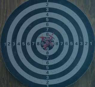 This is an image of a target