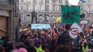 avant_les_violences_policieres_une_belle_manifestation_dr[1]