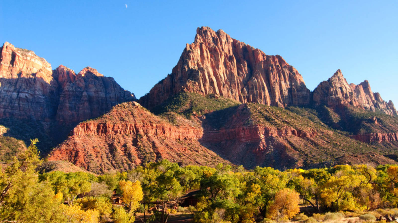 Fall Aspens Wallpaper The 10 Best Places To See Fall Foliage 183 National Parks