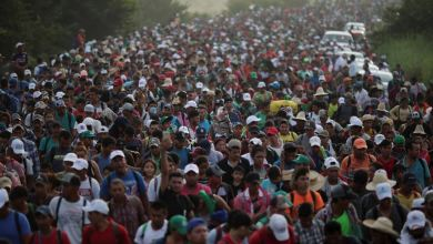 Photo of We should legalize EVERYONE in the caravan and here's why