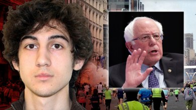 boston bomber is bernie supporter