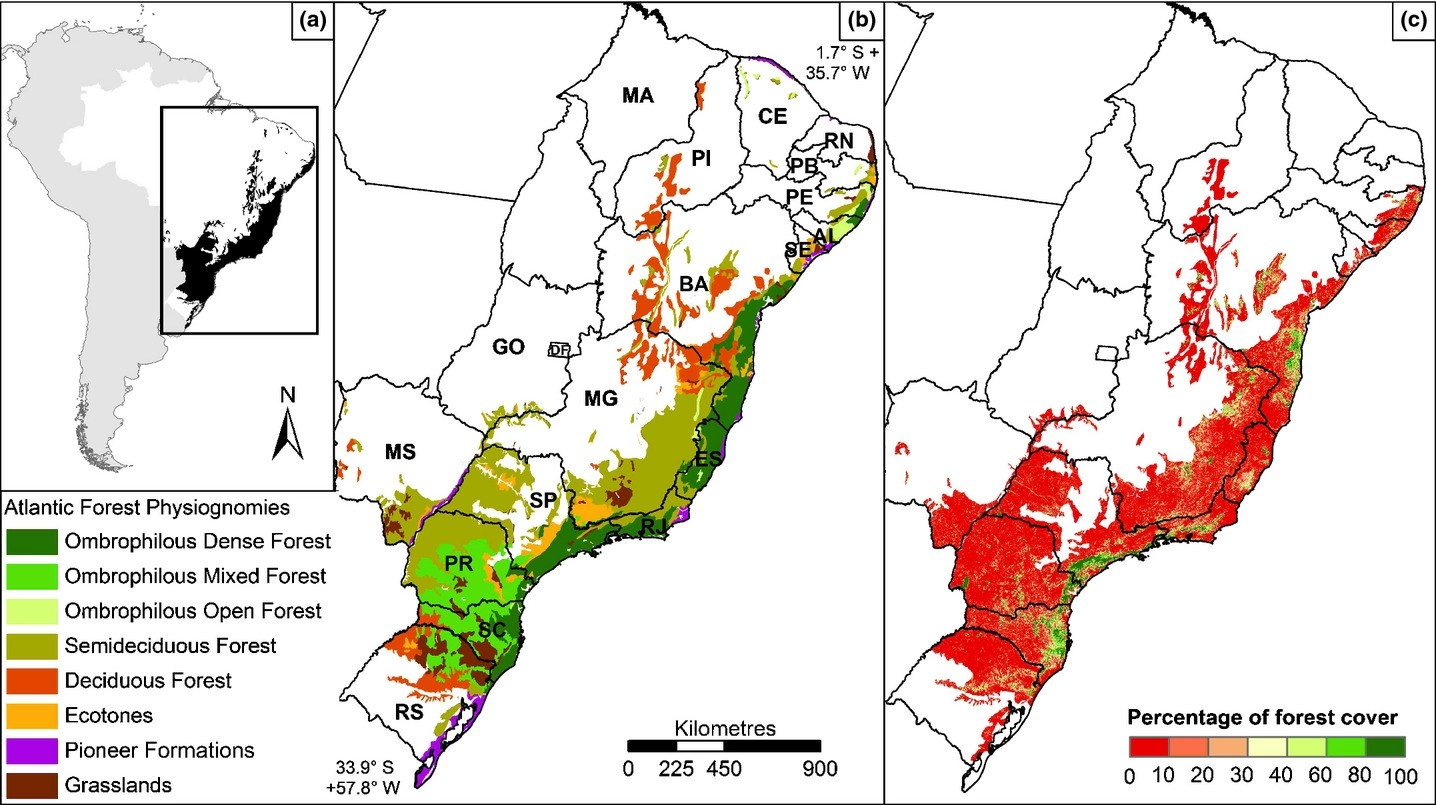 Pdf | the atlantic forest, the second largest forest in south america and one of the most biodiverse biomes in the world, is also one of the. Experiences From The Brazilian Atlantic Forest Ecological Findings And Conservation Initiatives Joly 2014 New Phytologist Wiley Online Library