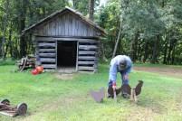 Bill Taylor_Johnson Farm